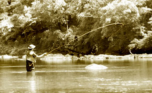 Fly fishing in a mountain river